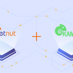 Configure proxy setting on Kameleo - netnut residential proxy network